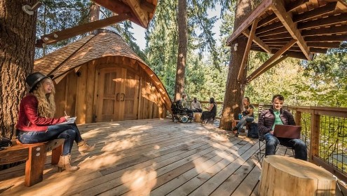 Microsoft изгради куќички на дрво за своите вработени (ВИДЕО)
