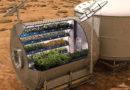 Направено семе кое може да се одгледува на марс
