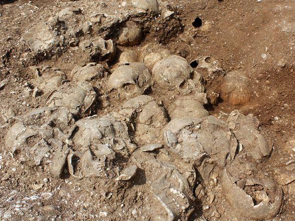 Откриени скелети на библиски џинови