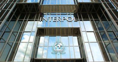 Интерпол: Уапсени 15 луѓе поради онлајн измама – штета од 18 милиони евра