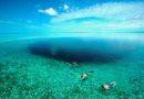 Откриена најголемата мистерија за сината морска дупка на Белизе (ВИДЕО)
