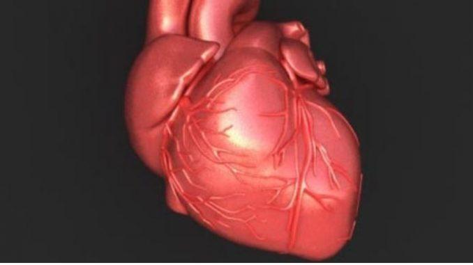 Фластер против срцев удар ќе биде тестиран на луѓе (ВИДЕО)
