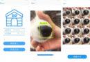 Кинеска апликација пронаоѓа исчезнати кучиња преку отпечаток од носот