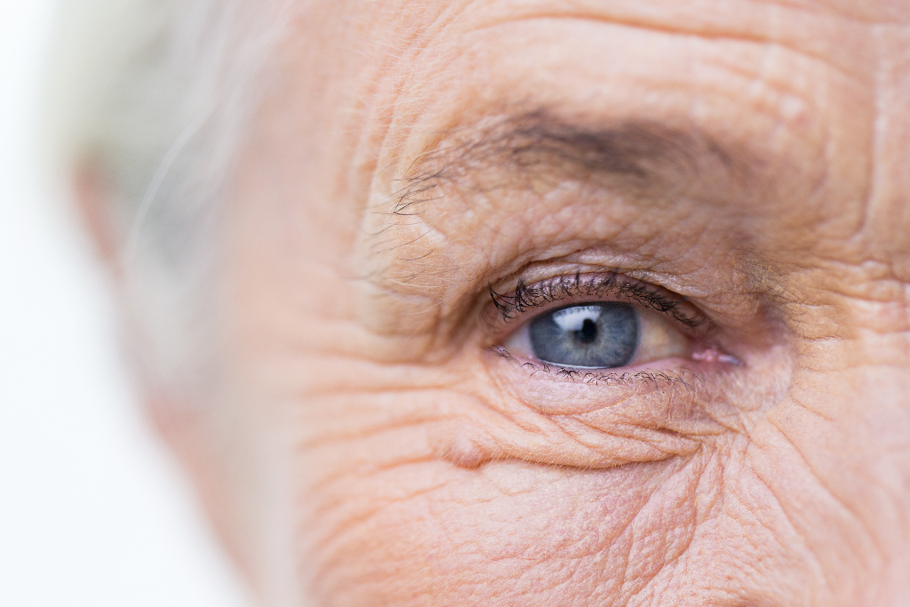 Животниот век на човекот: Зошто не живееме подолго?