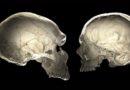 """Откриени траги на мистериозен човечки вид , научниците ги нарекуваат ,,популација на духови"""""""