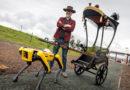 Кога робот на Boston Dynamics влече рикша (ВИДЕО)