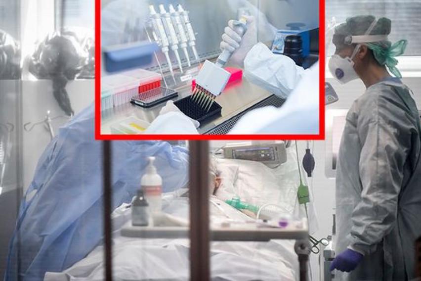 Кинезите тврдат: Пациентите со коронавирус ги лечевме со матични ќелии, и сега се целосно здрави