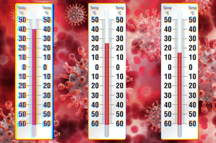 Светски научници: Високите температури ја намалија стапката на смртност од коронавирус