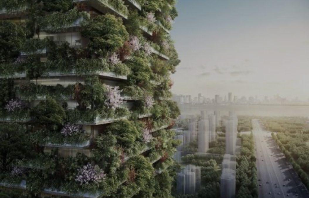 """""""Зелените"""" згради во Кина привлекуваат комарци и ги бркаат станарите"""