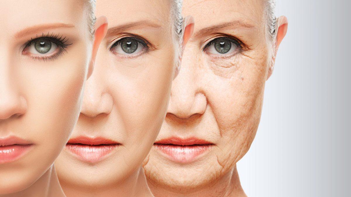 Кинески научници со нов генетски метод го одложуваат стареењето