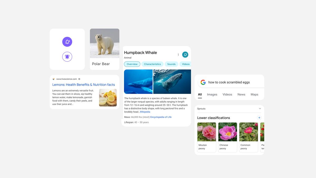 Google Search добива визуелен редизајн на мобилните уреди