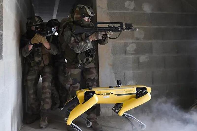 Француската војска тестираше роботско куче во симулација на борба (ВИДЕО)